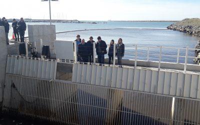 """El Intendente recorrió la obra """"Arroyo del Barco"""""""